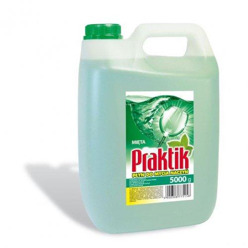 Praktik Dishwashing Liquid 5l Mint Clovin