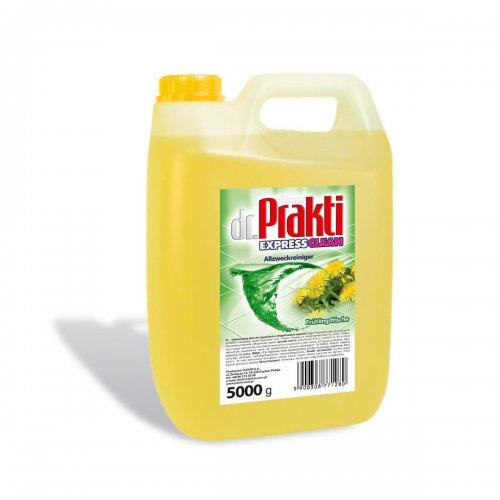 Dr.Prakti Universal Liquid 5l Spring Fresh Clovin